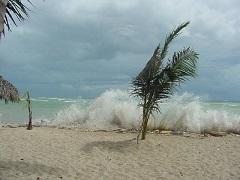 Pogoda V Dominikane Po Mesyacam Temperatura Vody I Sezony