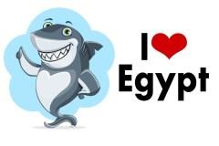 Есть ли акулы в Египте, реальна ли угроза?