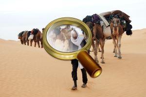 население туниса